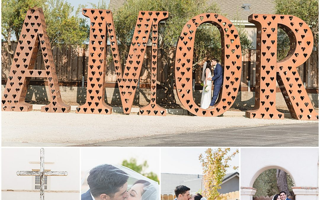 Intimate Hollister Backyard Wedding in Front of the Family Tree | Monelle + Joshua