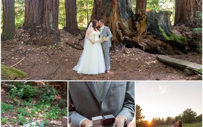Redwood Ridge Estate Wedding in Los Gatos | Lauren and David