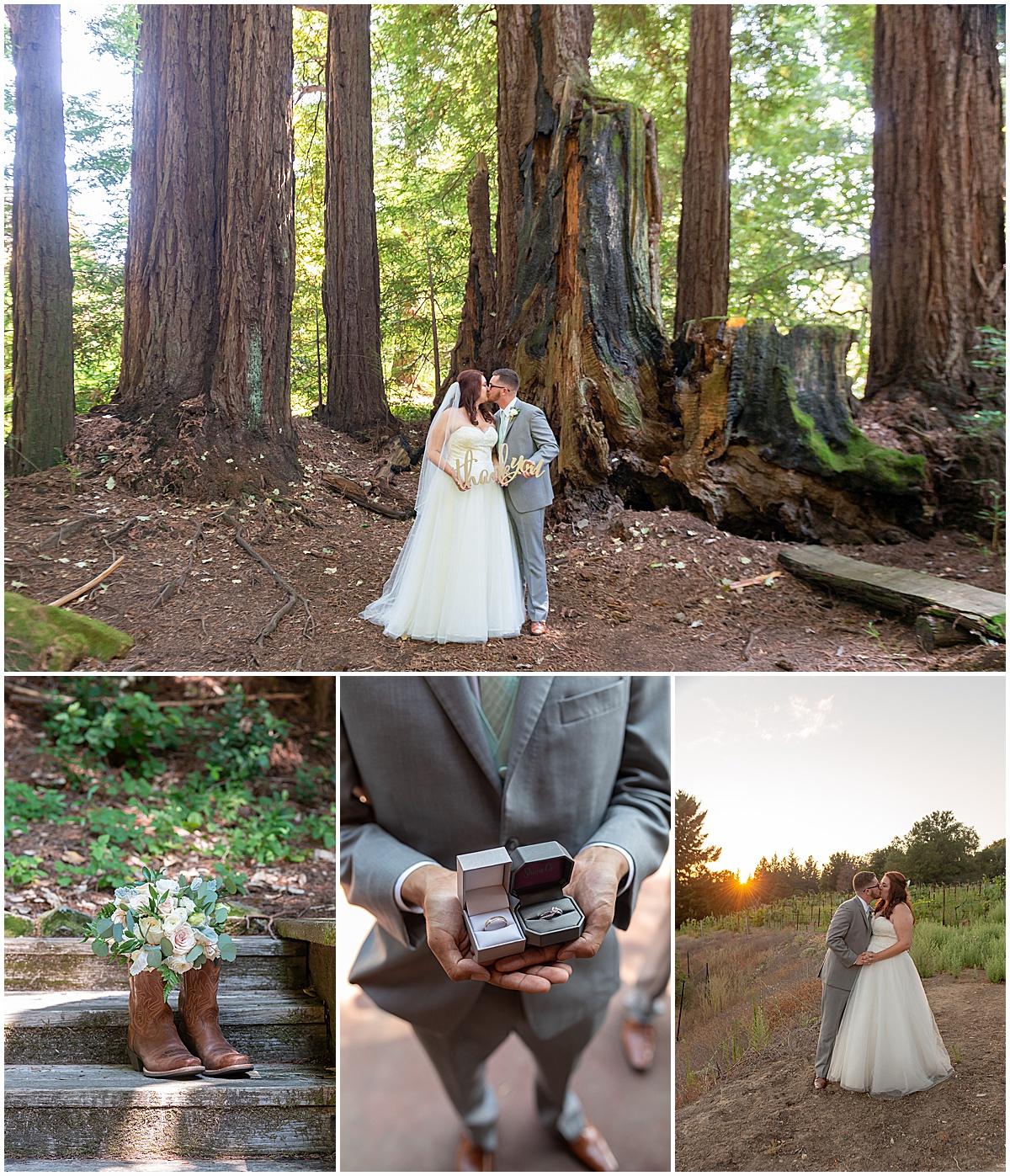 redwood ridge estate wedding in los gatos david and lauren by Jen Vazquez Photography_0083