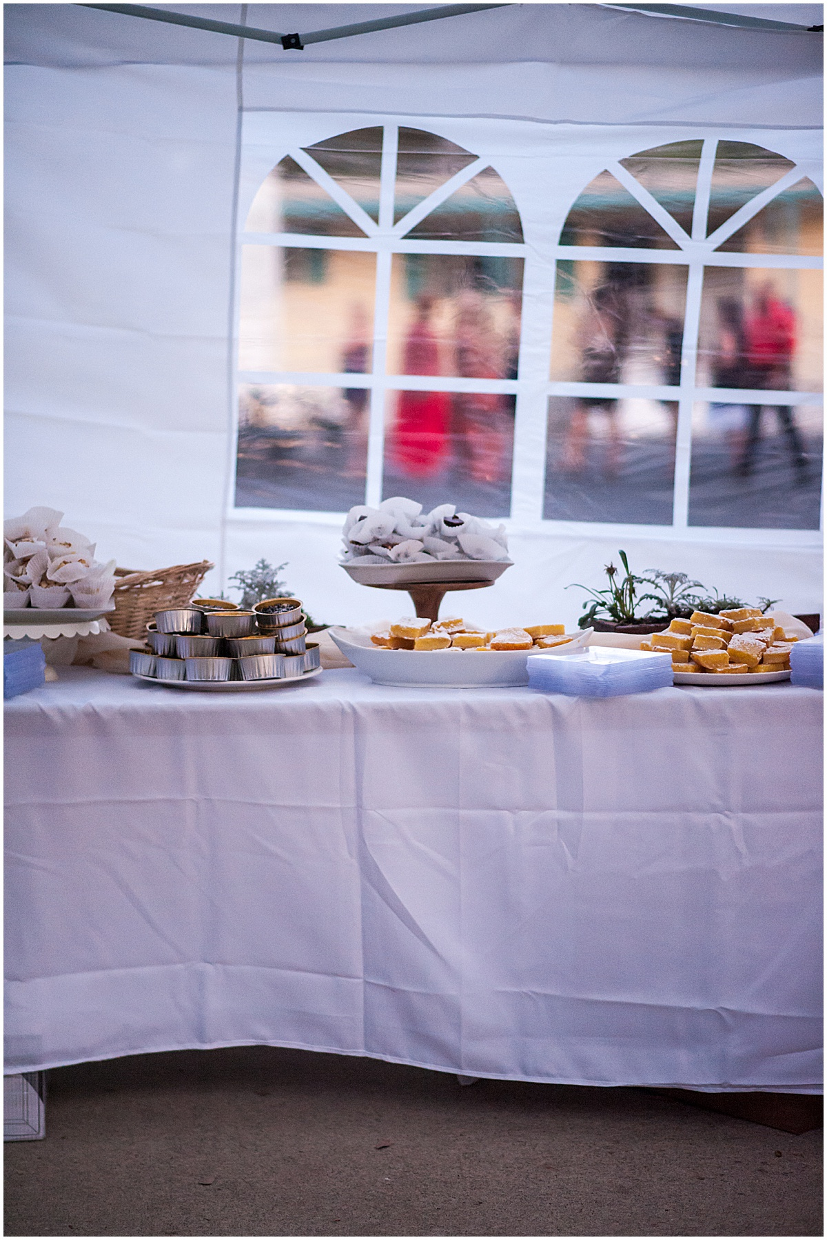 Morgan Hill Estate Botanical Wedding | Brina and Andy015