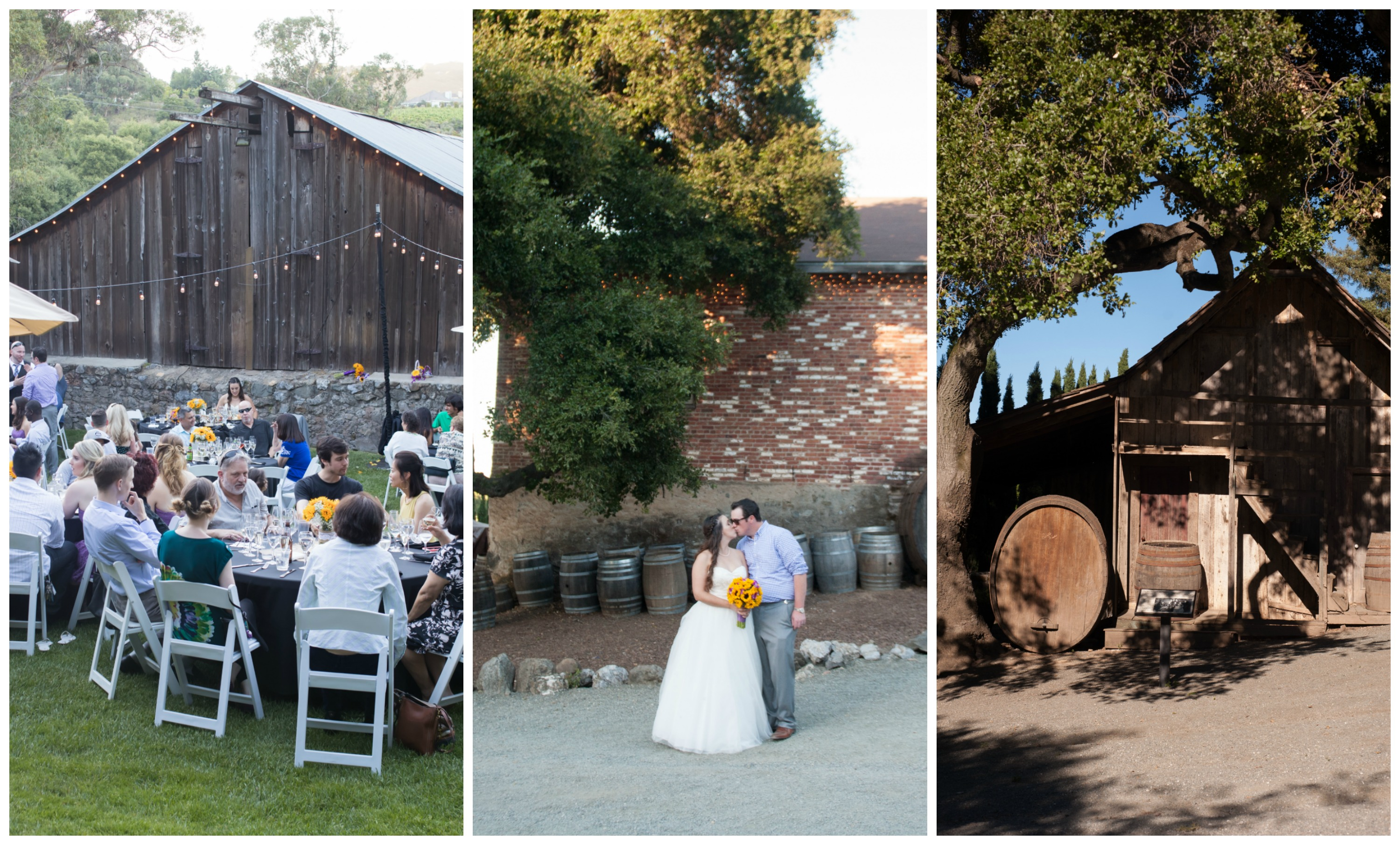 Cupertino Wedding at Picchetti Winery with Megan + DJ Location 1