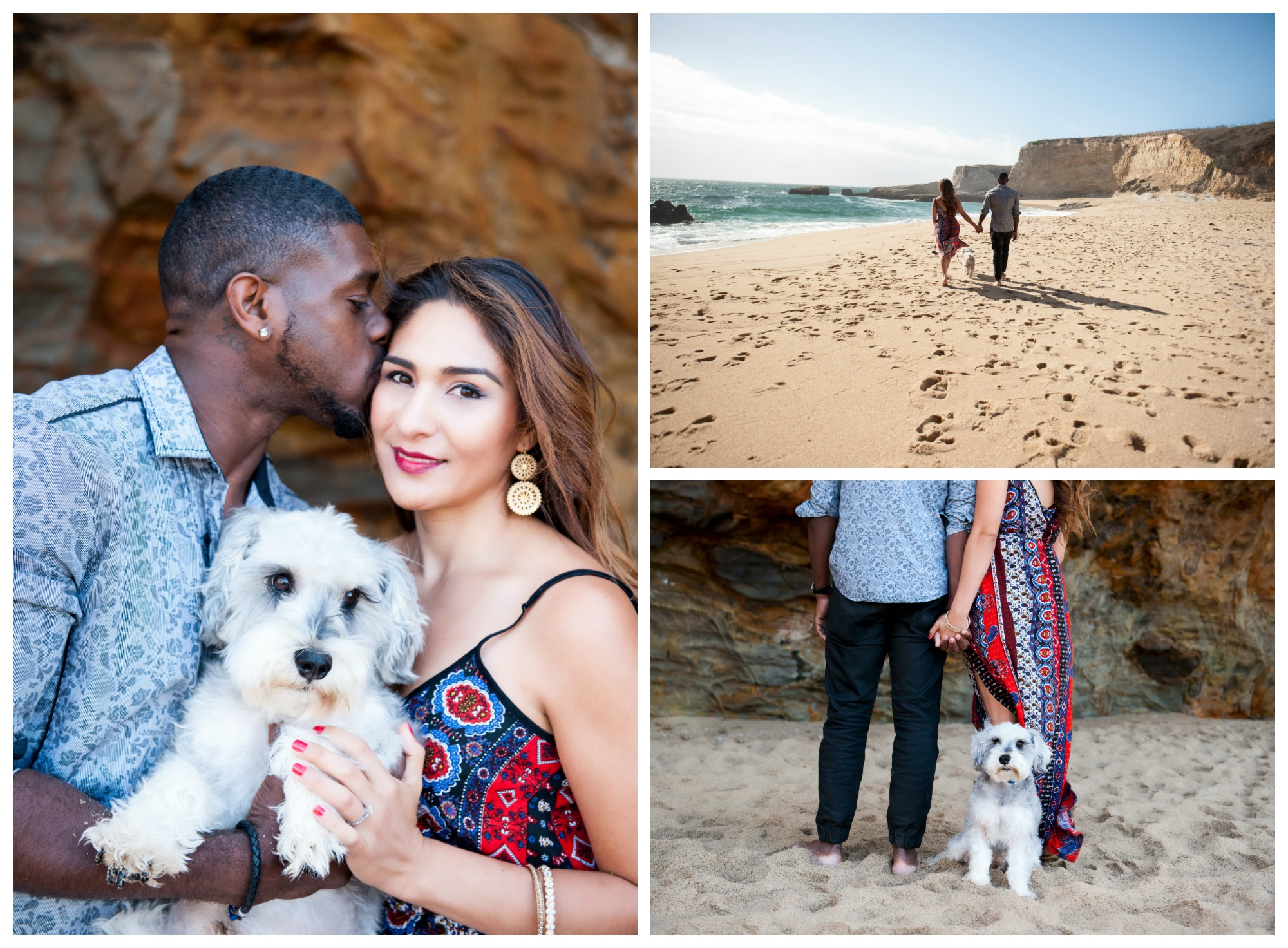 panther beach engagement shoot in santa cruz with couple and dog