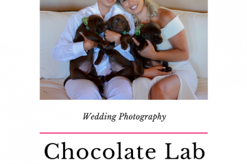 puppy wedding with Jen Vazquez Photography